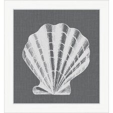 <strong>Melissa Van Hise</strong> White Shell on Gray lV Wall Art