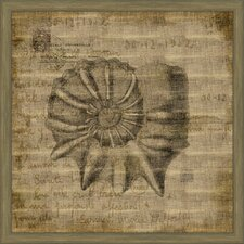 <strong>Melissa Van Hise</strong> Shells on Antique Linen I Wall Art