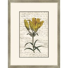 Yellow Flower with Writing III Wall Art