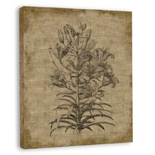 <strong>Melissa Van Hise</strong> Bessler VI Canvas Wall Art