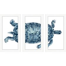 3 Piece Blue Turtle Wall Art