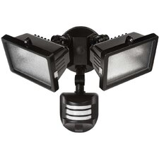 <strong>Globe Electric Company</strong> 2 Light Outdoor Halogen Floodlight