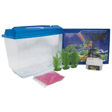 1 Gallon Goldfish and Betta Aquarium Kit