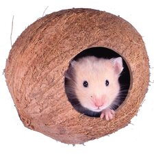 Coconut Cabana for Hamsters and Mice