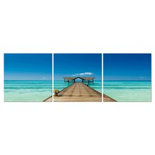 Baxton Studio Azure Tropics 3 Piece Photographic Print on Canvas Set