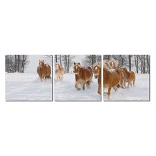 Baxton Studio Horse Herd Mounted 3 Piece Photographic Print on Canvas Set