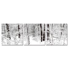 Baxton Studio Winter Woods 3 Piece Photographic Print on Canvas Set