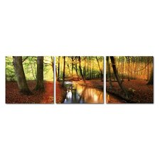 Baxton Studio Forest Oasis 3 Piece Photographic Print on Canvas Set