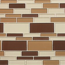 "California 10-1/2"" x 9-1/2"" Cristezza Glass Tile in Coffee Aroma"