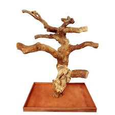 Carved Single Java Wood Tree