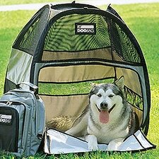 Motor Trend House/Tent Yard Kennel
