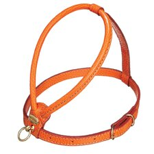 Fashion Leather Dog Harness in Orange
