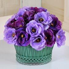 Poppy Anemone Basket