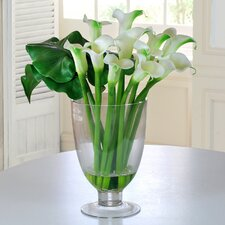 <strong>Jane Seymour Botanicals</strong> Calla Lilies in Glass