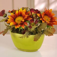 Sunflowers & Cosmos in Ceramic Vase