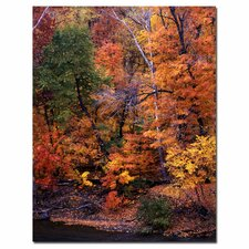 "<strong>Trademark Fine Art</strong> I Love Autumn by Kurt Shaffer, Canvas Art - 24"" x 18"""