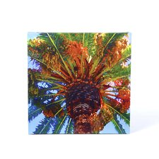 """""""Palm Tree Looking Up"""" by Amy Vangsgard Painting Print on Canvas"""