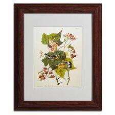 John James Audubon 'Black and Yellow Warbler' Framed Art