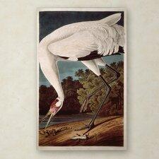 """Whooping Crane"" Canvas Art"