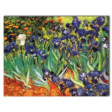'Irises at Saint-Remy' by Vincent van Gogh Painting Print on Canvas