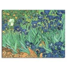 'Irises, 1889' by Vincent van Gogh Painting Print Canvas