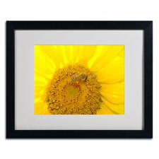 'Honey-Maker' by Monica Fleet Matted Framed Photographic Print