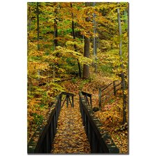"<strong>Trademark Fine Art</strong> Fall Bridge by Kurt Shaffer, Canvas Art - 24"" x 16"""
