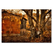"<strong>Trademark Fine Art</strong> Autumn on the Farm by Lois Bryan, Canvas Art - 22""  x 32"""