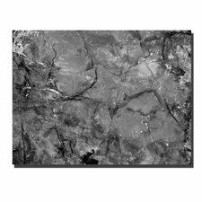 "<strong>Trademark Fine Art</strong> Petrified Abstract by Kurt Shaffer, Canvas Art - 24"" x 32"""