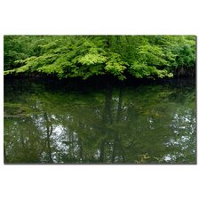 "<strong>Trademark Fine Art</strong> Maple Marsh Reflections by Kurt Shaffer, Canvas Art - 16"" x 24"""