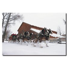"<strong>Trademark Fine Art</strong> Clydesdales Snowing in Front of Barn 16"" Canvas Art"