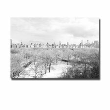 "<strong>Trademark Fine Art</strong> ""Snow Everywhere"" Canvas Art"