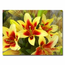 "<strong>Trademark Fine Art</strong> ""Lillies"" Canvas Art"