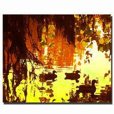 "<strong>Trademark Fine Art</strong> ""Ducks on Lake"" Canvas Art"