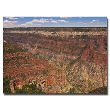 "<strong>Trademark Fine Art</strong> ""Green Canyons"" Canvas Art"