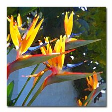 "<strong>Trademark Fine Art</strong> ""Bird of Paradise Backlit by Sun"" Canvas Art"