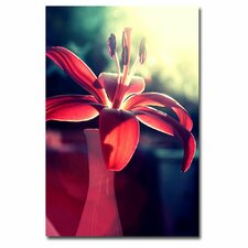 "<strong>Trademark Fine Art</strong> ""Lady in Red"" Canvas Art"
