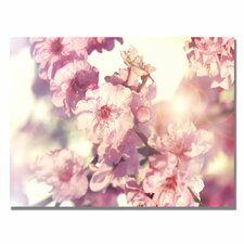 "<strong>Trademark Fine Art</strong> ""Spring Melody"" Canvas Art"