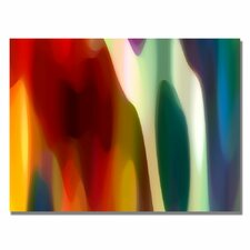 "<strong>Trademark Fine Art</strong> ""Color Fury III"" Canvas Art"