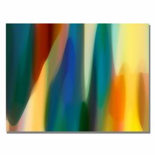 "<strong>Trademark Fine Art</strong> ""Color Fury IV"" Canvas Art"