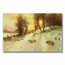 "<strong>Trademark Fine Art</strong> ""Sheep in the Winter"" Canvas Art"