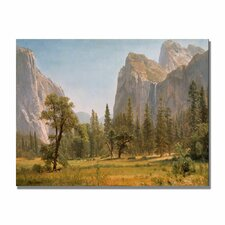 "<strong>Trademark Fine Art</strong> ""Bridal Veil Falls Yosemite"" Canvas Art"