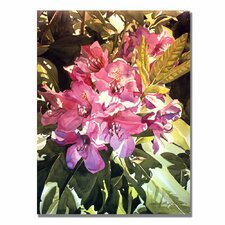 <strong>Trademark Fine Art</strong> 'Royal Rhododendrons' Canvas Art