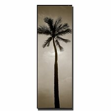 <strong>Trademark Fine Art</strong> 'Palm' Canvas Art
