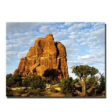 <strong>Trademark Fine Art</strong> 'Monument' Canvas Art