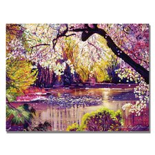 'Central Park Spring Pond' by David Lloyd Glover Painting Print on Canvas