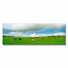 'Irish Countryside' by Preston Painting Print on Canvas