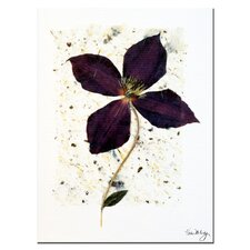 <strong>Trademark Fine Art</strong> 'Aubergine' Canvas Art