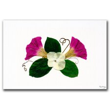 <strong>Trademark Fine Art</strong> 'Scarlett O'Hara Morning Glory' Canvas Art