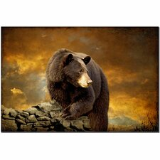 <strong>Trademark Fine Art</strong> 'The Bear Went Over the Mountain' Canvas Art